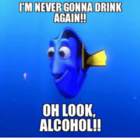 M NEVER GONNA DRINK  AGAIN!!  OH LOOK,  ALCOHOL!!
