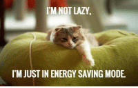Energy, Lazy, and Think: 'M NOT LAZY  I'M JUST IN ENERGY SAVING MODE <p>People Think I'm Lazy.</p>