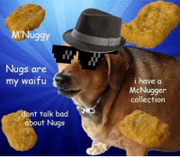 My Waifu: M Nuggy  Nugs are  my waifu  ont talk bad  about Nugs  i have a  McNugger  collection