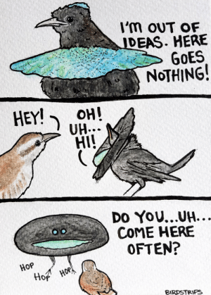 Omg, Tumblr, and Blog: 'm OUT OF  IDEAS. HERE  NoTHING  HEY!  OH!  HI  Do YOU...UH  COME HERE  OFTEN?  Hop omg-images:When you've tried everything [OC]