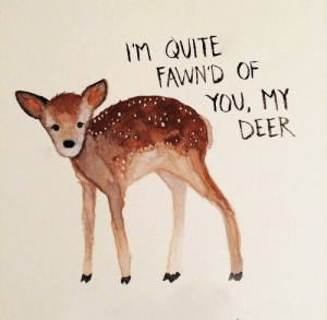 Deer, Quite, and You: M QUITE  FAWND OF  YOU, MY  DEER