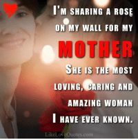 Memes, Rose, and 🤖: M SHARING A ROSE  ON MY WALL FOR MY  HE IS THE MOST  LOVING, CARING AND  AMAZING WOMAN  I HAVE EVER KNOWN.  Like Love Qu  com Thank you Mom. You are the best.