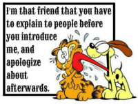 Apology: 'm that friend that you have  to explain to people before  you introduce  me, and  apologize  about  afterwards