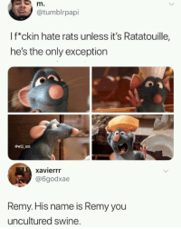 Ratatouille, Remy, and Ent: m.  @tumblrpapi  If*ckin hate rats unless it's Ratatouille,  he's the only exception  ewill ent  xavierrr  @6godxae  Remy. His name is Remy you  uncultured swine. Dont forget his name