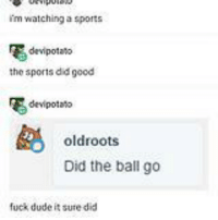 Dude, Sports, and Fuck: 'm watching a sports  dervipotats  the sports did good  devipotato  oldroots  Did the ball go  fuck dude it sure did Enjoy my dumping (pt4)