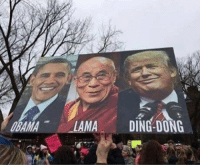Forwardsfromgrandma, Signs, and Mø: MA  DING DONG FWD: FUNNY SIGN!!! LOL!!!