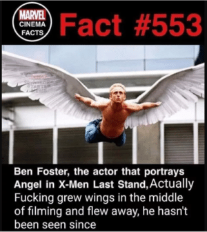 Facts, Fucking, and Funny: ma Fact #553  MARVEL  CINEMA  FACTS  Ben Foster, the actor that portrays  Angel in X-Men Last Stand, Actually  Fucking grew wings in the middle  of filming and flew away, he hasn't  been seen since Now thats dedication via /r/funny https://ift.tt/2OsRx5E