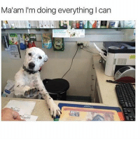 Please just calm down Ma'am (@memes): Ma'am I'm doing everything I can Please just calm down Ma'am (@memes)