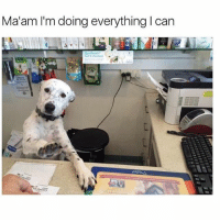 Still the best meme ever @bustle: Ma'am I'm doing everything I can Still the best meme ever @bustle