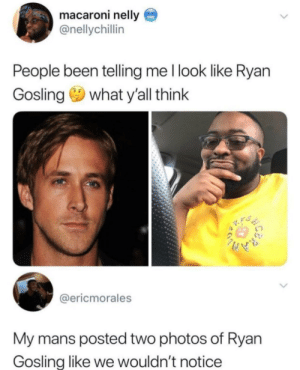 - Dicen que me parezco a Ryan Gosling.- Tío, si pones dos fotos de Ryan Gosling no lo sabremos.: macaroni nelly  @nellychillin  People been telling me l look like Ryan  Gosling what y'all think  @ericmorales  My mans posted two photos of Ryan  Gosling like we wouldn't notice - Dicen que me parezco a Ryan Gosling.- Tío, si pones dos fotos de Ryan Gosling no lo sabremos.