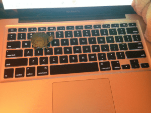 """spoopying:  """"man this essay is taking forever"""" : MacBook Pro  esc  tab  caps loc  shift  shift  alt  command option  fn  controloption  command spoopying:  """"man this essay is taking forever"""""""