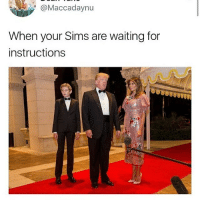 Memes, Stan, and The Sims: Maccadaynu  When your Sims are waiting for  instructions i Stan the sims 3 and 2 and i just started getting into the sims 4 like i bought it when it came out but it@never compared to 3 so i didnt play it and ive bought 2 expansion packs this week 😓😓😓😓i dont know how to pirate 4 packs only 3&2 uh
