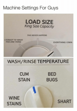 stain: Machine Settings For Guys  LOAD SIZE  King Size Capacity  THIS NEVER HAPPENS  I FORGOT TO WASH  THIS ONE THING  EVERYTHING I OWN  WASH/RINSE TEMPERATURE  CUM  STAIN  BED  BUGS  WINE  STAINS  SHART