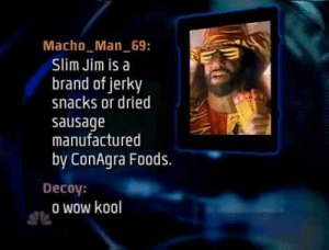 Wow, Brand, and Sausage: Macho Man 69:  Slim Jim is a  brand of jerky  snacks or dried  sausage  manufactured  by ConAgra Foods.  Decoy:  o wow kool