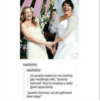 """Life, Memes, and Good: maddishly:  maddish  do people realize by not starting  gay weddings with, """"queerly  beloved"""" they're missing a really  good opportunity  """"queerly beloved, we are gathered  here togay"""" we changed the profile picture because i felt like we needed to jazz this account up a bit. also i have a fly in my room and i look like im playing real life fruit ninja - Fin 🐢"""