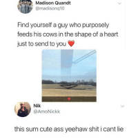 What in tarnation?!?!: Madison Quandt  @madisonq10  Find yourself a guy who purposely  feeds his cows in the shape of a heart  just to send to you  Nik  @AmoNickk  this sum cute ass yeehaw shit i cant lie What in tarnation?!?!