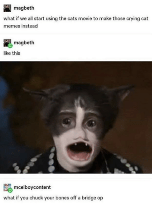 Apologies in advance: magbeth  what if we all start using the cats movie to make those crying cat  memes instead  magbeth  like this  mcelboycontent  what if you chuck your bones off a bridge op Apologies in advance