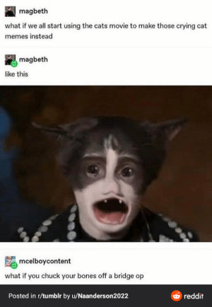 Thanks, I hate Cats (2019) even more: magbeth  what if we all start using the cats movie to make those crying cat  memes instead  magbeth  like this  mcelboycontent  what if you chuck your bones off a bridge op  O reddit  Posted in r/tumblr by u/Naanderson2022 Thanks, I hate Cats (2019) even more