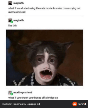 Thanks, I hate bootleg Cats movie: magbeth  what if we all start using the cats movie to make those crying cat  memes instead  magbeth  like this  mcelboycontent  what if you chuck your bones off a bridge op  O reddit  Posted in r/memes by u/gaggi_94 Thanks, I hate bootleg Cats movie