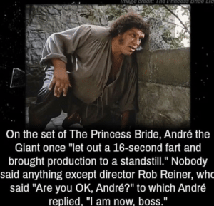 "André the Giant, Giant, and Princess: mage credit The Phincess Bride  Lta  On the set of The Princess Bride, André the  Giant once ""let out a 16-second fart and  brought production to a standstill."" Nobody  said anything except director Rob Reiner, wh  said ""Are you OK, André?"" to which André  replied, ""I am now, boss."" Seemed like a 5 star man"