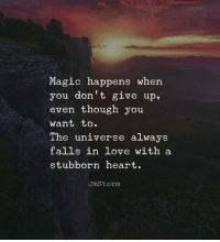 Love, Heart, and Magic: Magic happens when  you don't give up.  even though you  want to.  The universe always  falls in love with a  stubborn heart  UmStorm