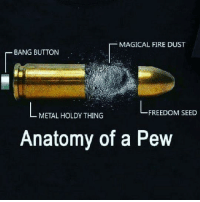 """Fire, Tumblr, and Blog: MAGICAL FIRE DUST  BANG BUTTON  FREEDOM SEED  METAL HOLDY THING  Anatomy of a Pew <p><a href=""""http://memehumor.net/post/176225515823/so-thats-how-a-pew-pew-pew-works"""" class=""""tumblr_blog"""">memehumor</a>:</p>  <blockquote><p>So that's how a pew-pew-pew works!</p></blockquote>"""