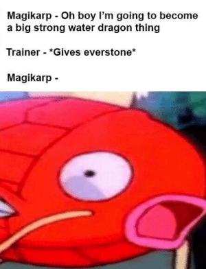 Magikarp, Water, and Strong: Magikarp Oh boy I'm going to become  a big strong water dragon thing  Trainer - *Gives everstone*  Magikarp How could you do this