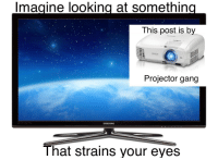 Lmao, Shit, and Gang: magine looking at somethin  This post is by  EPSON  Projector gang  SAMSUNG  That strains your eyes