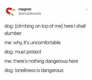 Climbing, Dank, and Loneliness: magnet  @arcadeseals  dog: [climbing on top of me] here i shall  slumber  me: why, it's uncomfortable  dog: must protect  me: there's nothing dangerous here  dog: loneliness is dangerous now the loneliness is mine