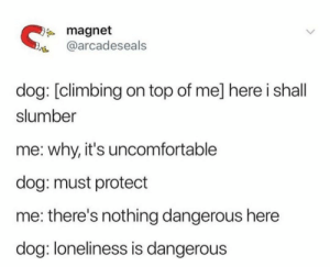 Climbing, Loneliness, and Dog: magnet  @arcadeseals  dog: [climbing on top of me] here i shall  slumber  me: why, it's uncomfortable  dog: must protect  there's nothing dangerous here  dog: loneliness is dangerous I wish I had such an honourable purpose