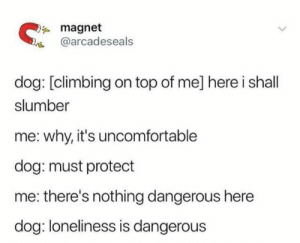Climbing, Dank, and Twitter: magnet  @arcadeseals  dog: [climbing on top of me] here i shall  slumber  why, it's uncomfortable  dog: must protect  there's nothing dangerous here  dog: loneliness is dangerous (credit: twitter/@arcadeseals)