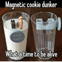 0_o: Magnetic cookie dunker  What atime to be alive 0_o