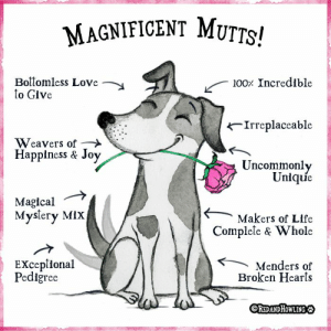 Happy National Mutt Day!: MAGNIFICENT MUTTS!  Boitomless Love  to Give  100 Incredible  Irreplaceable  Weavers of  Happiness & Joy  Uncommonly  Unique  Magical  Myslery MiX  Makers of Life  Complele & Whole  EXceplional  Pediğree  Menders of  Broken Hearts  OREDANDHOWLING Happy National Mutt Day!