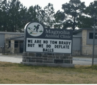 Nfl, Tom Brady, and Animal: Magnolia  Animal Clinic  WE ARE NO TOM BRADY  BUT WE DO DEFLATE  BALLS Well played...
