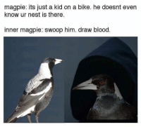 Dank Memes, Blood, and Kid: magpie: its just a kid on a bike. he doesnt even  know ur nest is there.  inner magpie: swoop him. draw blood Lmao