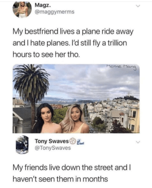 Friends, Meme, and Memes: Magz.  @maggymerms  My bestfriend lives a plane ride away  and I hate planes. I'd still fly a trillion  ours to see her tho  Meme Man  Tony Swaves  @TonySwaves  My friends live down the street and l  haven't seen them in months I need new friends via /r/memes https://ift.tt/2CdfnBz