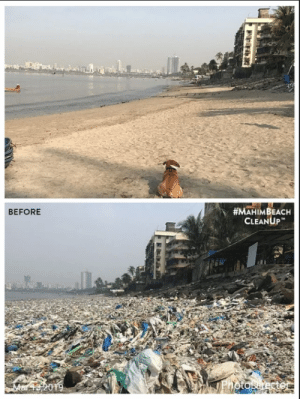 Beach, India, and Plastic:  #MAHIMBEACH  CLEANUP  BEFORE  ai India is waking up, the mahimbeachcleanup has cleared more than 700 tons of plastic from our beach. via /r/wholesomememes https://ift.tt/2F9wPGz
