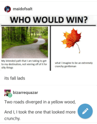 Fall, Crunchy, and Who: maidofsalt  WHO WOULD WIN?  My intended path that I am taking to get  to my destination, not veering off of it for  silly things  what i imagine to be an extremely  crunchy gentleman  its fall lads  bizarrequazar  Two roads diverged in a yellow wood,  AndI, I took the one that looked more  crunchy. Bit late in the year, but whatever