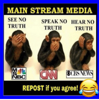 Memes, Truth, and 🤖: MAIN STREAM MEDIA  SEE NO  TRUTH  SPEAK NO HEAR NO  TRUTH TRUTH  SNEWS  NBC  REPOST if you agree! Agree