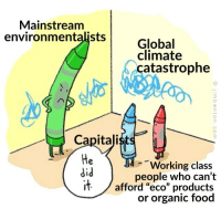 "Food, Tumblr, and China: Mainstream  environmentalists  Global  climate  catastrophe  0  Capitali  He  did  lt  Working class  people who can't  /afford ""eco"" products  or organic food wilhelmares:  stupid-weeb-ramblings:  China literally produces twice as much pollution as the US, and they aren't exactly capitalistic  1. China is incredibly capitalistic. 2. .32 billion shouldn't have only half as much pollution as 1.38 billion.  ""China is incredibly capitalistic"""