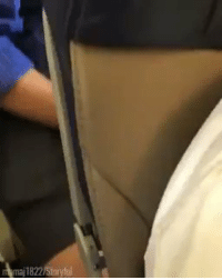 Precious, Flight, and Girl Memes: maj1822/Staryfil this little boy fist bumping everyone on his flight is the most precious thing ive seen all day 😭😭 https://t.co/9wHaXIXHky