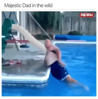 Dad, Dank, and Fathers Day: Majestic Dad in the wild Happy Father's Day to all the majestic dads! 😂  (contact us at partner@memes.com for credit/removal)