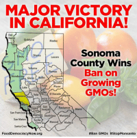 Butt, Memes, and Yolo: MAJOR VICTORY  IN CALIFORNIA!  Del  Norte  Siskiyou  Modoc  Sonoma  Shasta  Trinity  Lassen  County Wins  Humboldt  Tehama  Ban on  Plumas  Mendocin  Glenn  Butte  Sierra  Growing  Nevada  Colusa Yuba  Placer  Lake  GMOS!  Sutter  El Dorado  Alpine  Yolo  Sonoma  apa  Sacra-  ento Amado  Marin Solano  Calaveras  San  Tuolumne  Mono  ontra Joaquin  San Francisco  Alameda  Stanislaus Mariposa  San Mateo  Santa  Merced Madera  Clara  Santa Cruz  FoodDemocracyNow.org  #Ban GMOs BREAKING: Major Victory for Sonoma County!   An important step in the right direction! Last night voters in Sonoma County California passed a ballot initiative to ban GMOs from being grown in their county by a wide majority of 55.9% to 44.1%.  Election results: http://election.pressdemocrat.com/sonomameasures.html http://vote.sonoma-county.org/content.aspx?sid=1009&id=2456  #stopmonsanto #sonomacounty #labelgmos #fooddemocracynow #california #organicfarmers