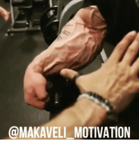 Gym, Love, and Memes: @MAKAVEL MOTIVATION LiftThatShit Frank Mcgrath @frank_mcgrath78 motivation bodybuilding training workout muscle gym GymRat gymLife gains mass hardcore beast lifestyle love passion GoHardOrGoHome NoPainNoGain PushYourself hardwork strong strength vascularity NeverGiveUp EnjoyTheGrind positiveenergy BeLegendary MakaveliMotivation