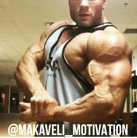 Gym, Memes, and Vision: @MAKAVEL MOTIVATION StopLyingToYourself Chris Bumstead @cbum_ motivation inspiration NoExcuses mindset willpower champion succes NeverGiveUp believeinyourself followyourdreams goal vision training workout bodybuilding muscle gym GymLife gains mass shredded physique classicphysique aesthetics strong strength NoPainNoGain BelieveToAchieve MakaveliMotivation