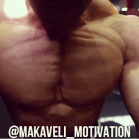 "Click, Gym, and Love: @MAKAVELI MOTIVATION Click the link in my bio and check out my new YouTube video ""BRING THE PAIN "" !!! @regangbodybuilding @guycisternino @sethferoce @realworld_tactical motivation inspiration training workout bodybuilding muscle gym hardwork NoPainNoGain GoHardOrGoHome gains mass strong strength lifestyle love passion NeverGiveUp believeinyourself followyourdreams goal vision NoExcuses BelieveToAchieve MakaveliMotivation"