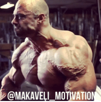 Memes, Vision, and Bodybuilding: @MAKAVELI-MOTIVATION There is no MagicPill ... no SpecialShake ... no SecretDiet ... Just GetOffYourAss !!! Guy Cisternino @guycisternino Frank Mcgrath @frank_mcgrath78 Seth Feroce @sethferoce motivation inspiration bodybuilding training workout muscle GymLife GymRat lifestyle love passion gains body shape physique NoExcuses NoPainNoGain GoHard NeverGiveUp FollowYourDream goal vision mindset success MakaveliMotivation