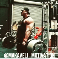 """"""" I AM NOT HERE TO TALK"""" -> click the link in my bio -> subscribe to my YouTube channel and check out my new video !!!! Dexter @mrolympia08 Shawn @flexatronrhoden Dallas @dallasmccarver Guy @guycisternino Tristen @tristenescolastico Speech @frank_mcgrath78 & @kevinlevrone motivation inspiration stayfocused focused DoTheWork WorkYourAssOff TrainHarderThanMe GoHardOrGoHome NoPainNoGain PushYourself training workout muscle gym gymLife gains lifestyle love passion bodybuilding fitness weightlifting champion mindset winner success NeverGiveUp believeinyourself BelieveToAchieve MakaveliMotivation: @MAKAVELL M """" I AM NOT HERE TO TALK"""" -> click the link in my bio -> subscribe to my YouTube channel and check out my new video !!!! Dexter @mrolympia08 Shawn @flexatronrhoden Dallas @dallasmccarver Guy @guycisternino Tristen @tristenescolastico Speech @frank_mcgrath78 & @kevinlevrone motivation inspiration stayfocused focused DoTheWork WorkYourAssOff TrainHarderThanMe GoHardOrGoHome NoPainNoGain PushYourself training workout muscle gym gymLife gains lifestyle love passion bodybuilding fitness weightlifting champion mindset winner success NeverGiveUp believeinyourself BelieveToAchieve MakaveliMotivation"""