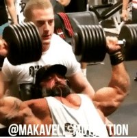 Gym, Memes, and Bodybuilding: @MAKAVEO  ION StopMakingExcuses Guy @guycisternino Seth @sethferoce Josh @josh_lenartowicz motivation inspiration NoExcuses KeepGoing NeverGiveUp willpower mindset champion success mentality grind grinder training workout muscle gym GymLife bodybuilding NoPainNoGain GoHardOrGoHome believeinyourself followyourdreams StopLyingToYourself BelieveToAchieve MakaveliMotivation
