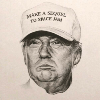 I don't know, maybe the Trump supports are right.: MAKE A SEQUEL  SPACE JAM I don't know, maybe the Trump supports are right.